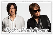 Rock Male Group